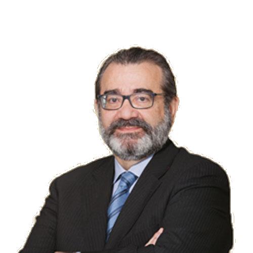 José Manuel <br>Cánovas García